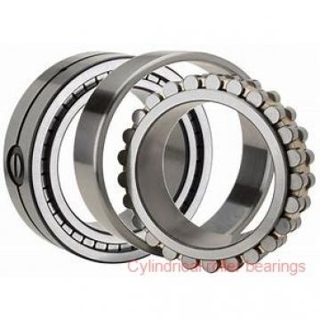 Toyana HK5018 cylindrical roller bearings