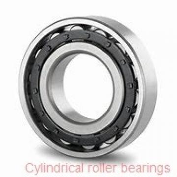 95 mm x 170 mm x 43 mm  NKE NU2219-E-M6 cylindrical roller bearings